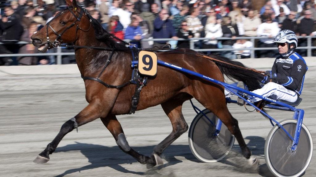 Per Lennartsson har en god vinnersjanse med Highspeed Call i V4-3/DD-2. Foto: hesteguiden.com