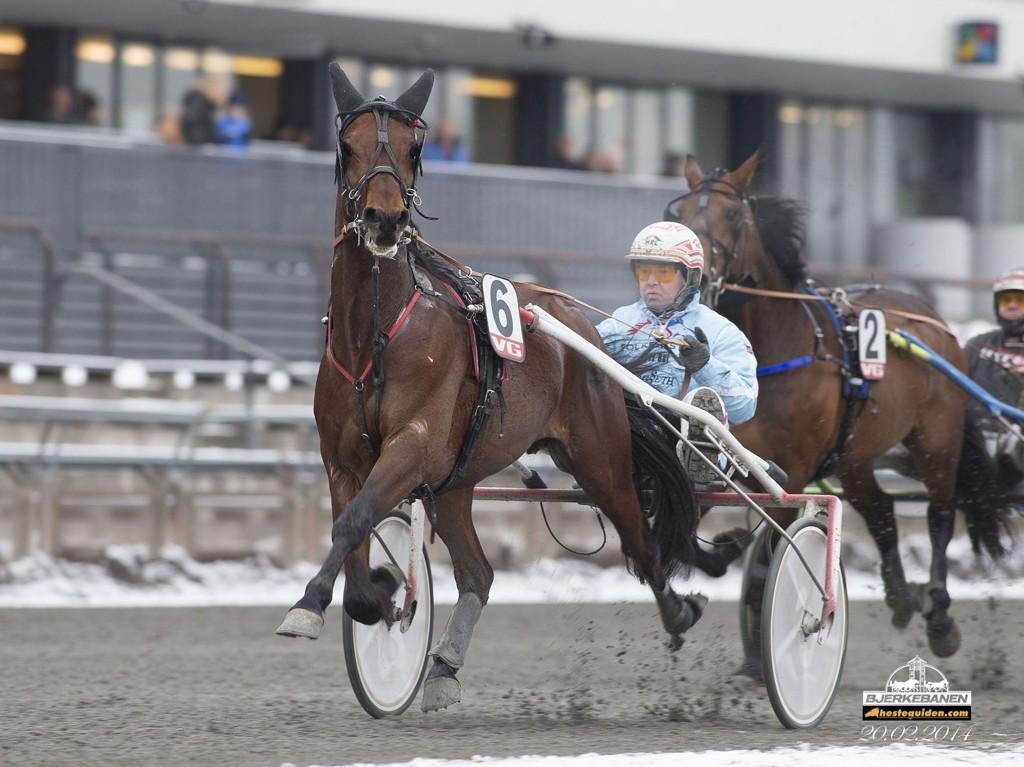 Folkehesten Bjerke Avalon har vunnet fire av sine fem siste løp og blir favoritt i V64-3 i Årjäng søndag.