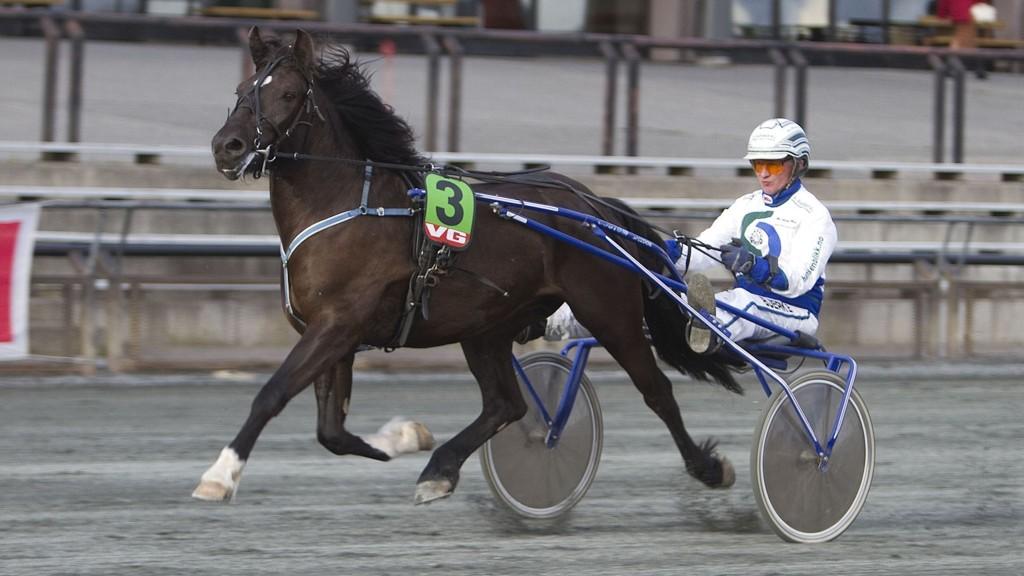 Lyssjø Faxa, og HC Holm blir en av våre bankere fra Harstad. Foto: Anders Kongsrud/www.hesteguiden.com.