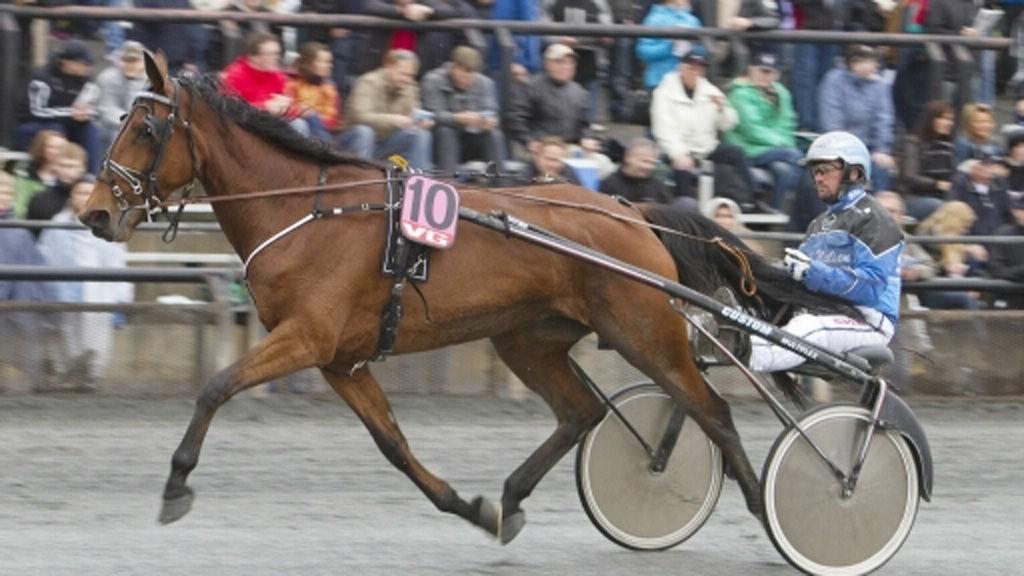 Henrik Lønborg setter seg opp bak Nettavisens banker i V5-spillet i Odense i ettermiddag.