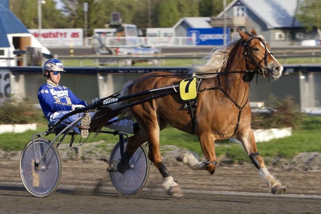 Solberg Jerkeld blir dagens holdepunkt i en ellers åpen V5-omgang. Foto Morten Skifjeld/Hesteguiden.com