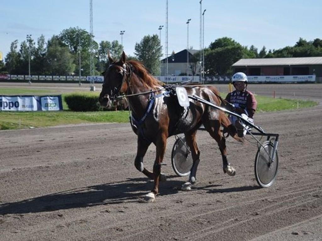 Pliggfaksen og Hans Brunlöf. Foto Trav Gävleborg.
