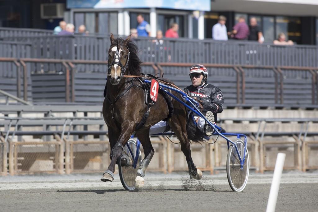 Myhreng Brage er dagens banker i a-spillet. Foto : Roger Svalsrød_hesteguiden.com