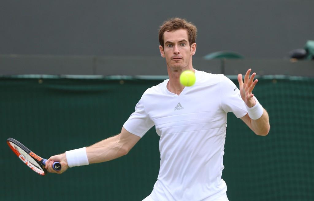 VIDERE: Andy Murray trives på gress.