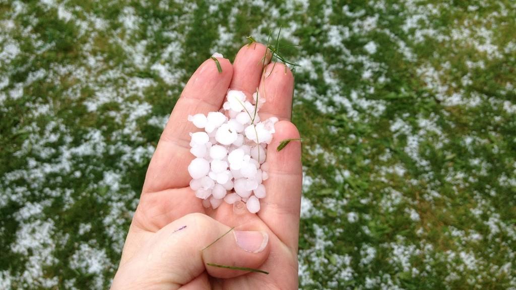 Store hagl på Nordstrand.