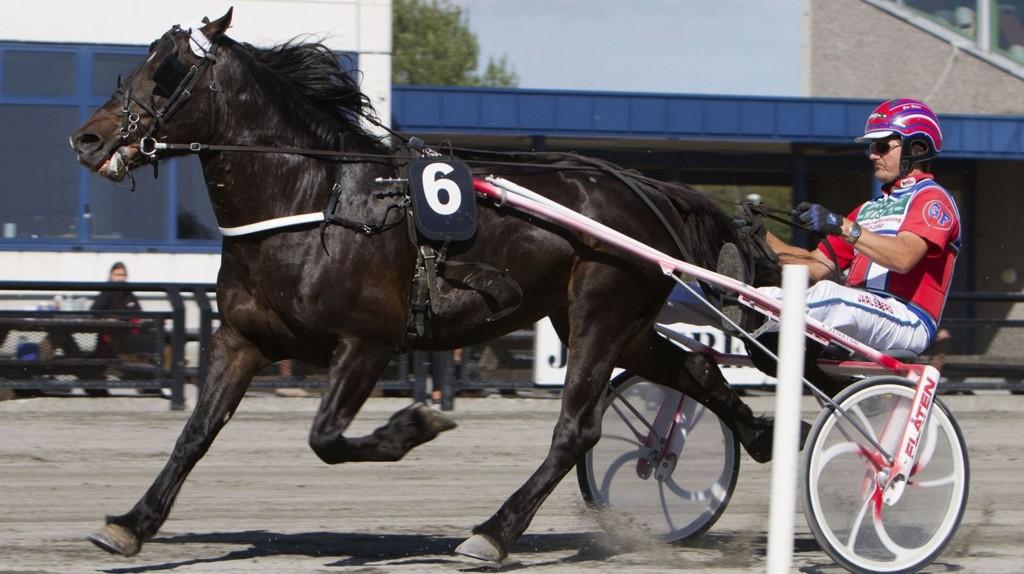 Jarlsberg26082013_Geir Flten kj¿rer pr¿vel¿p med Bokli Vind_Foto Morten Skifjeld/Hesteguiden.com