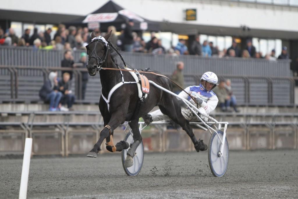 Peter Ingves gjester Karlshamn onsdag, men vi tror ikke at han kan stoppe vår banker for dagen. foto_øyvind Brusletten_hesteguiden.com