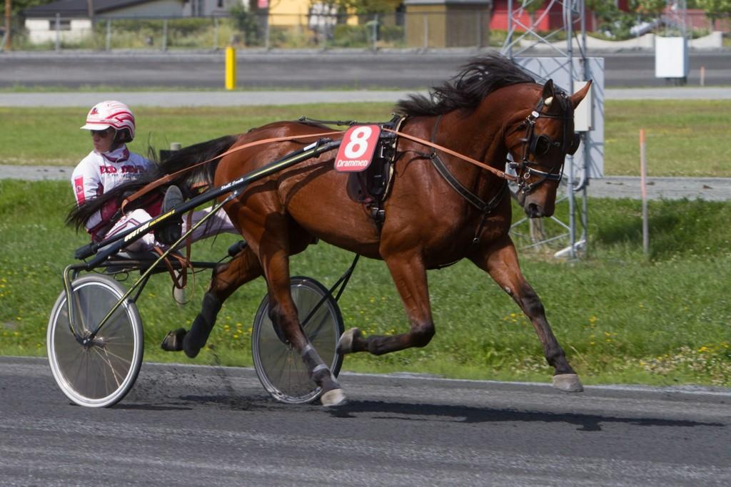 Enjoythemoment SC, og kusk Herman R Tvedt er vår småfrekke V65-banker fra Klosterskogen. Foto: Anders Kongsrud/www.hesteguiden.com