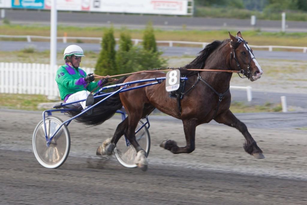 Eikprins og Atle Solhus blir vår frekke banker mot millionene i V75-spillet på lørdag. Foto: Anders Kongsrud/www.hesteguiden.com