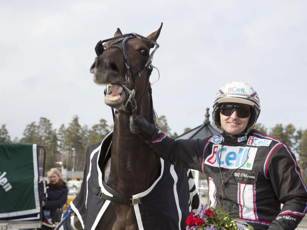 Ulf Ohlsson (her med Stormysky) er hardt betrodd i tre av fire V4-løp på Bergsåker tirsdag.
