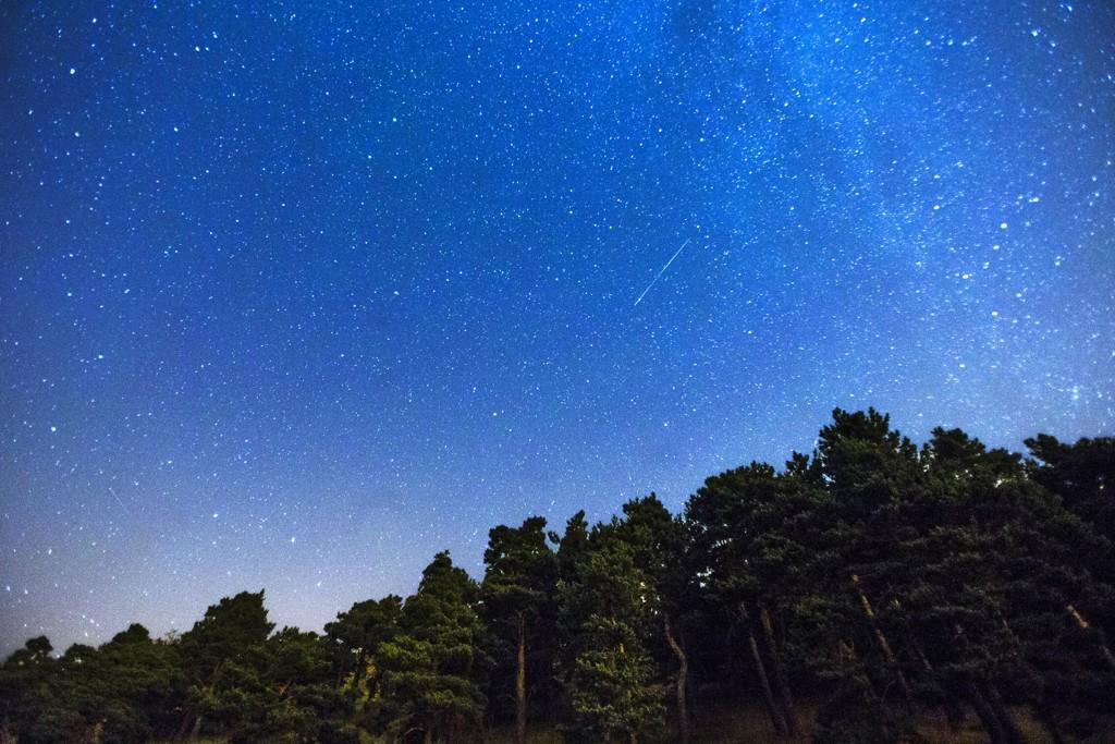 Dette bildet av Perseidene ble tatt i utkanten av Madrid 28. juli i år. Nå lyser Perseidene opp den norske nattehimmelen.