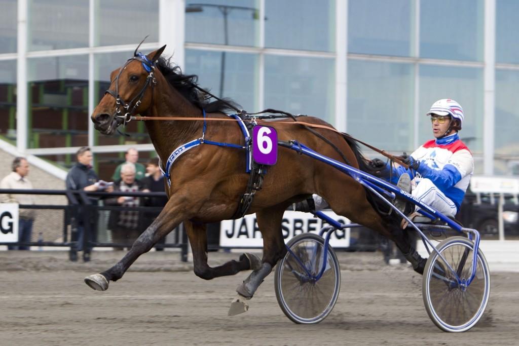 Sigbjørn Kolnes kommer med hele a-laget sitt til Bergen denne lørdagen. Rafolo med Lars Anvar Kolle blir tungt betrodd i V75-6. Foto Morten Skifjeld/Hesteguiden.com