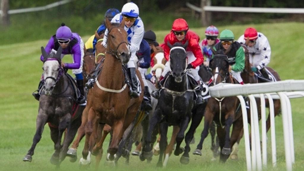 15 Norsktrente hester er på plass i Gøteborg denne søndagen.