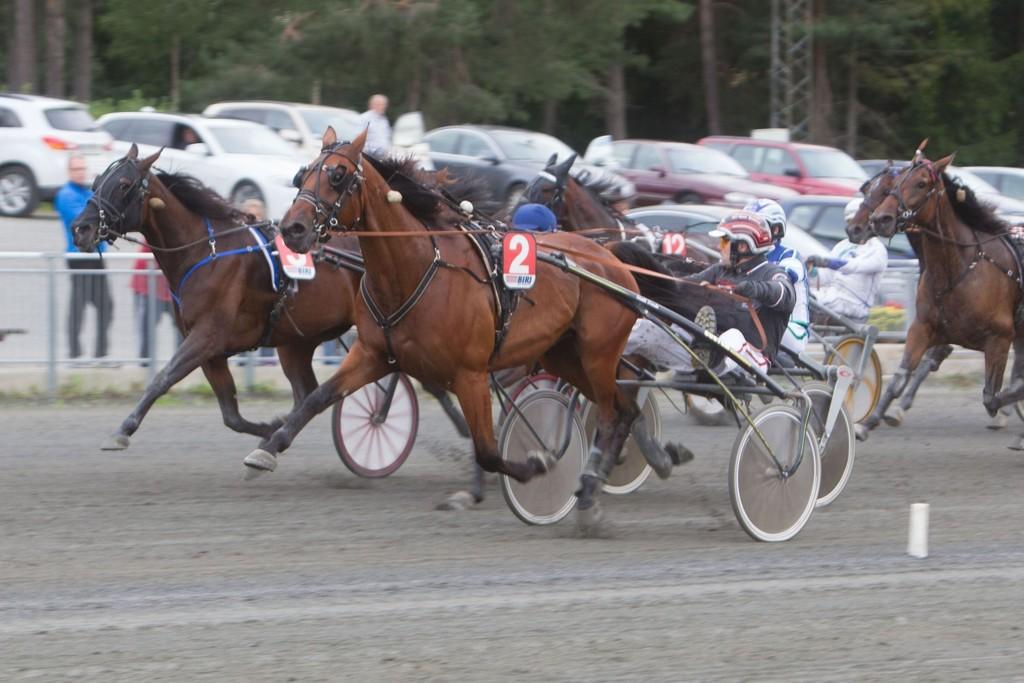 Det er duket for tette oppløp, og harde fighter i dagens lunsj fra Romme. Foto: Anders Kongsrud/www.hesteguiden.com.