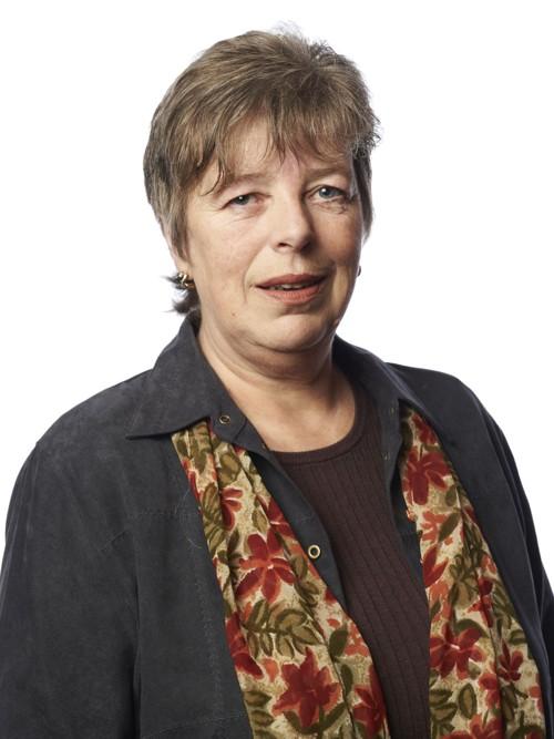 UPROBLEMATISK: Fylkestingsrepresentant Inger Ulvund syns ikke vervene hennes er problematiske.