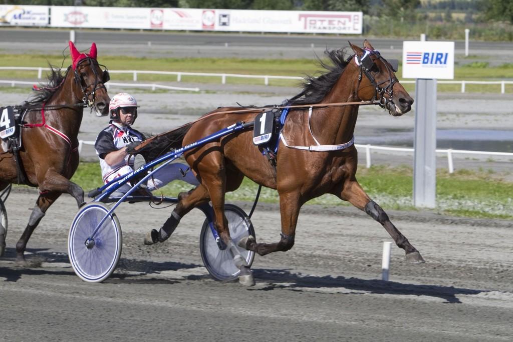 Løsner det endelig for Pavie Vang i V5-finalen? Foto: Anders Kongsrud/www.hesteguiden.com.