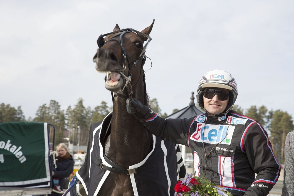 Ulf Ohlsson med hesten Stormysky etter en V75-seier på Momarken tidligere i år.