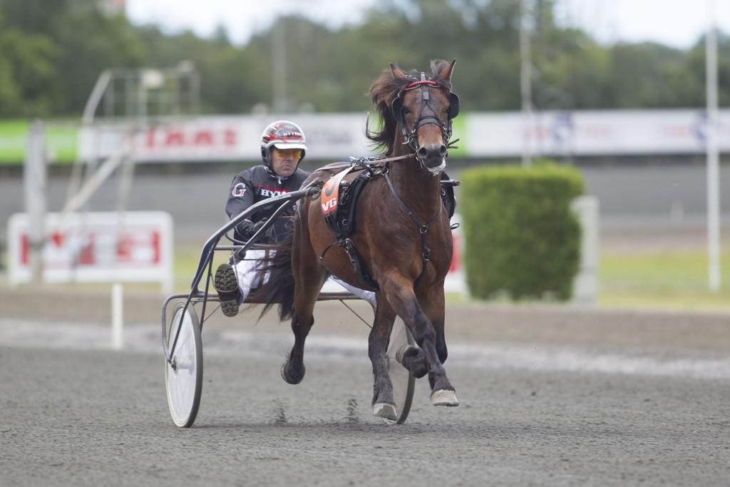 Lykkerus likte vi sist, og på mandag så jakter man ny seier. _foto_Roger Svalsr¿d_hesteguiden.com