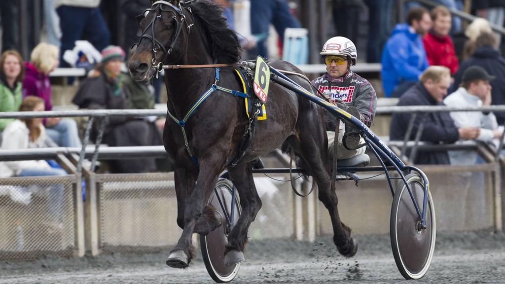 Ulf Ohlsson kjører en av våre to bankere denne søndagen. foto_Roger Svalsr¿d_hesteguiden.com