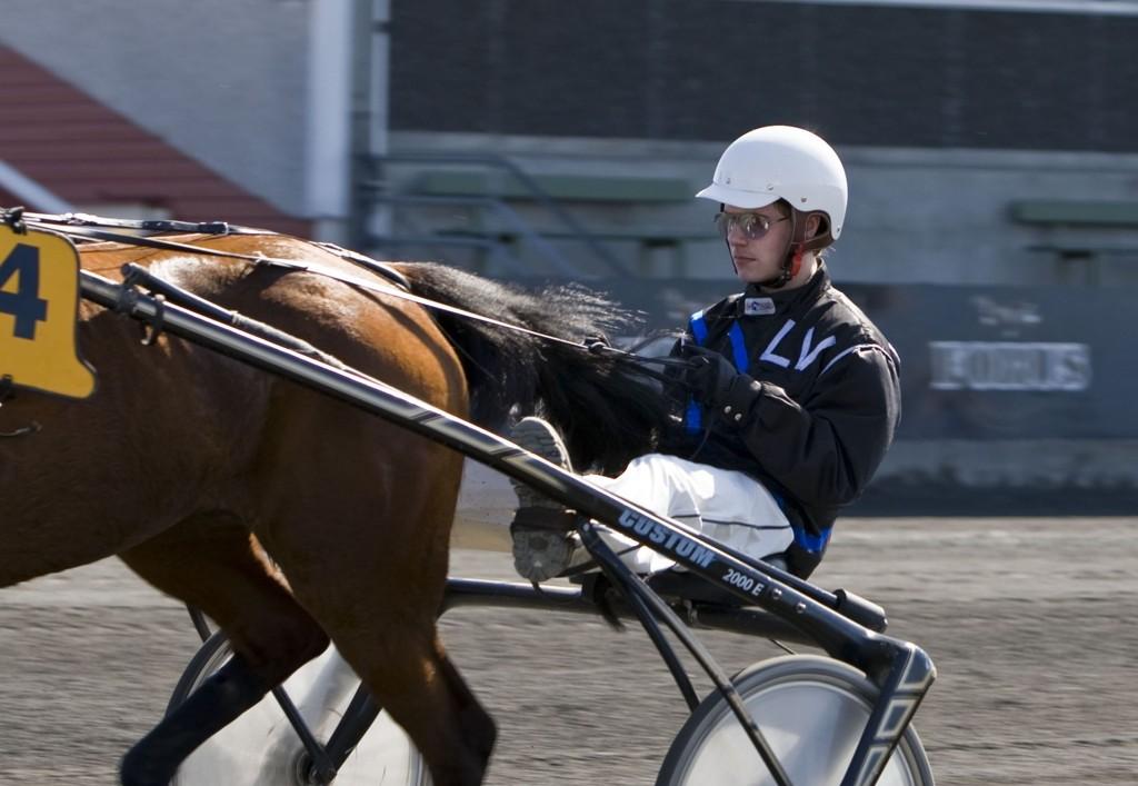 Lars Vebostad har en flott mulighet bak Tender Pilgrim denne lørdagen. foto_Roger Svalsr¿d_hesteguiden.com