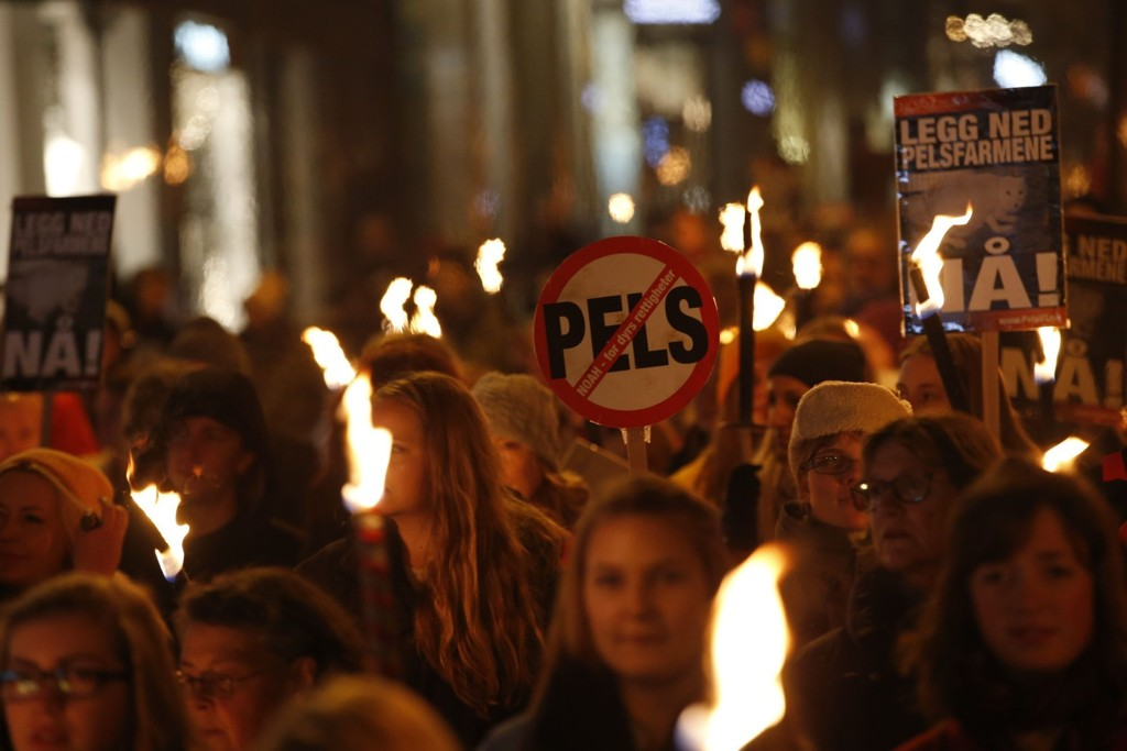 Demonstrantene tente fakler mot pels. Arrangementet var i regi av dyrebeskyttelsesorganisasjonen NOAH