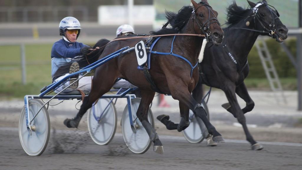 Jarlsberg11042014_Frode Hamre vant l¿p 5 med Dribbling_foto_Roger Svalsr¿d_hesteguiden.com
