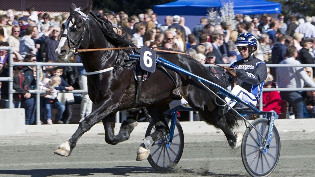 Tin Tveiten og Geir Mikkelsen.