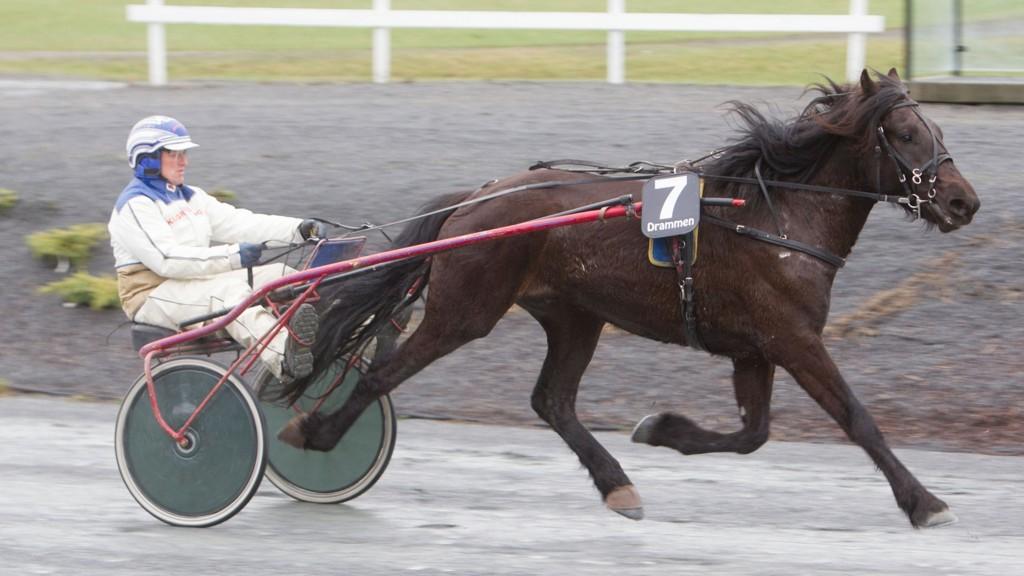 Art Skogfari (her avbildet i et prøveløp på Drammen 8. april i år med sin daværende trener Jan-Ivar Johansen).