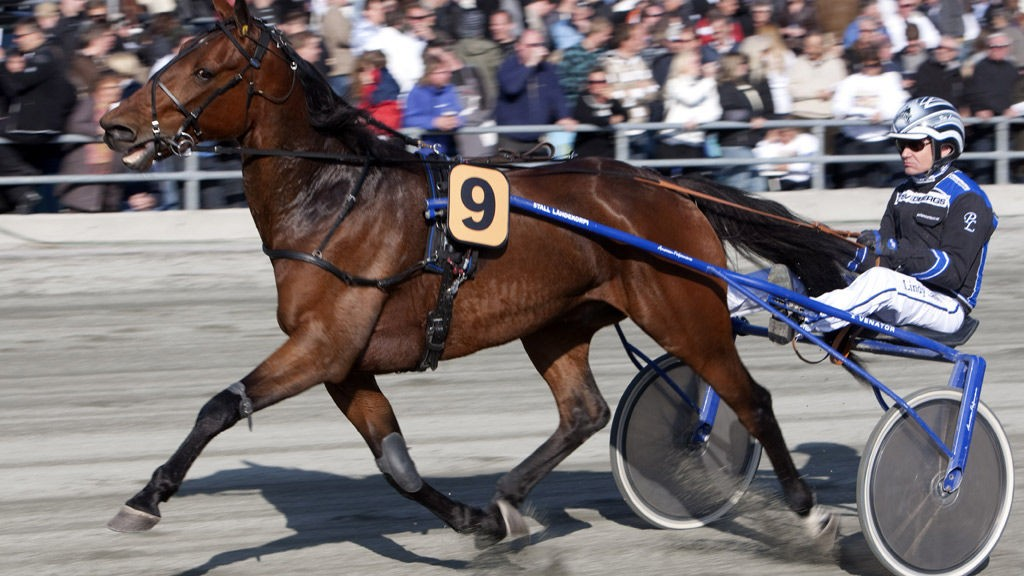 Dyktige Per Lennartsson har flere fine vinnersjanser på Eskilstuna tirsdag kveld.