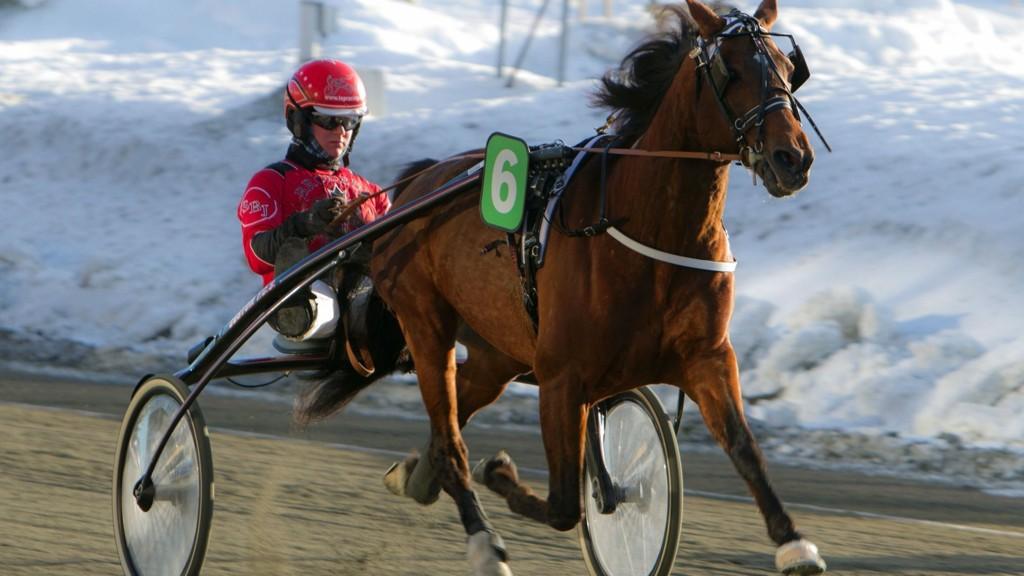 Cecena Ås og Simen Bjørbæk Jessen blir storfavoritter i V65-1 på Leangen i kveld.