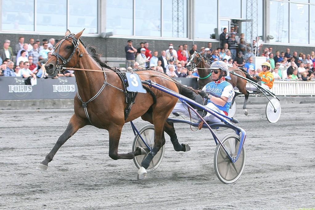 Joakim Lövgren dukker opp med en godbit i V4-finalen. Foto: Anders Kongsrud/www.hesteguiden.com.