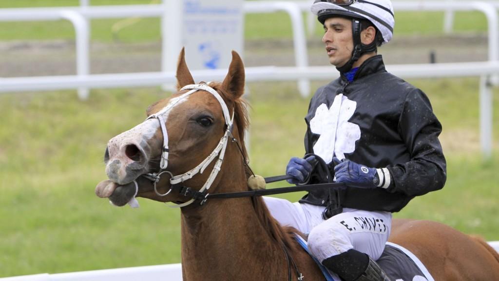 Elione Chaves hadde et flott 2014 og rir flere betrodde hester på Täby søndag.