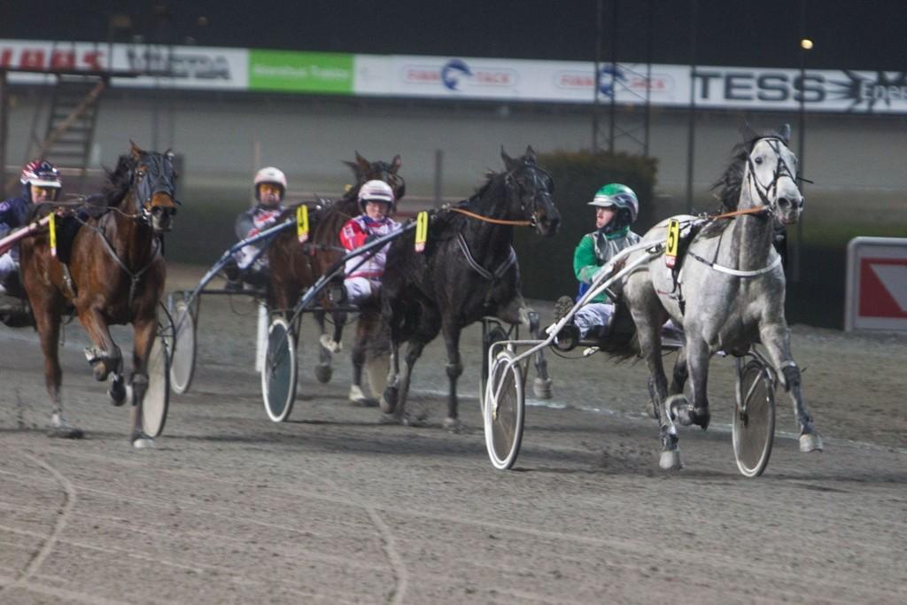 SJ's Victoria og kusk Erlend Rennesvik skal passes denne torsdagen. Foto: Anders Kongsrud/www.hesteguiden.com.