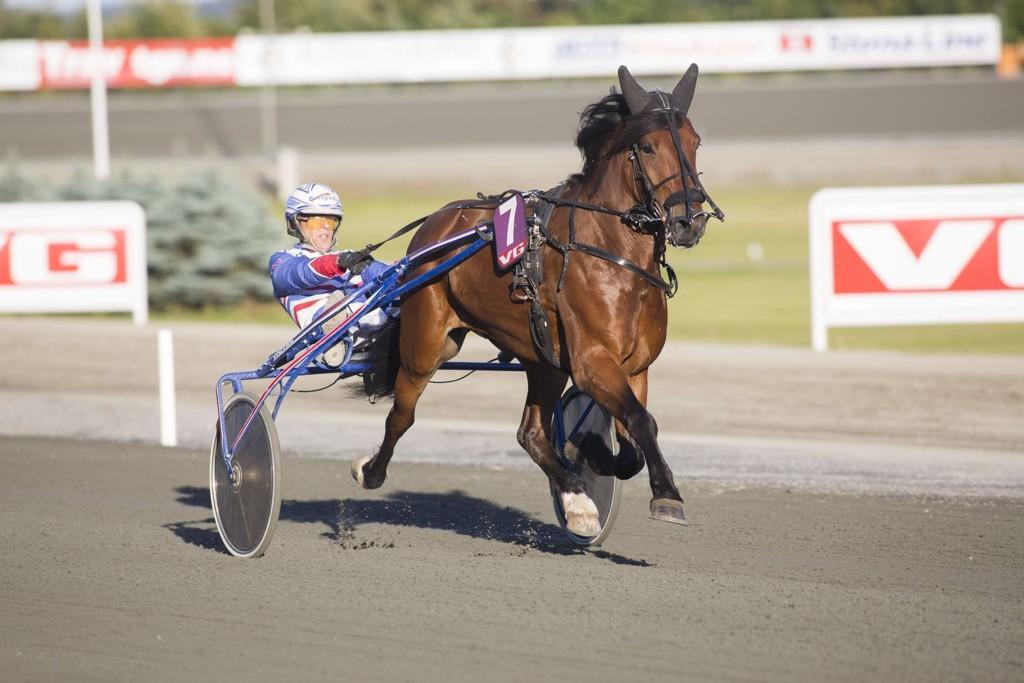 Ove Lindqvist kjører en av dagens tyngste V4-favoritter. _foto_Roger Svalsr¿d_hesteguiden.com