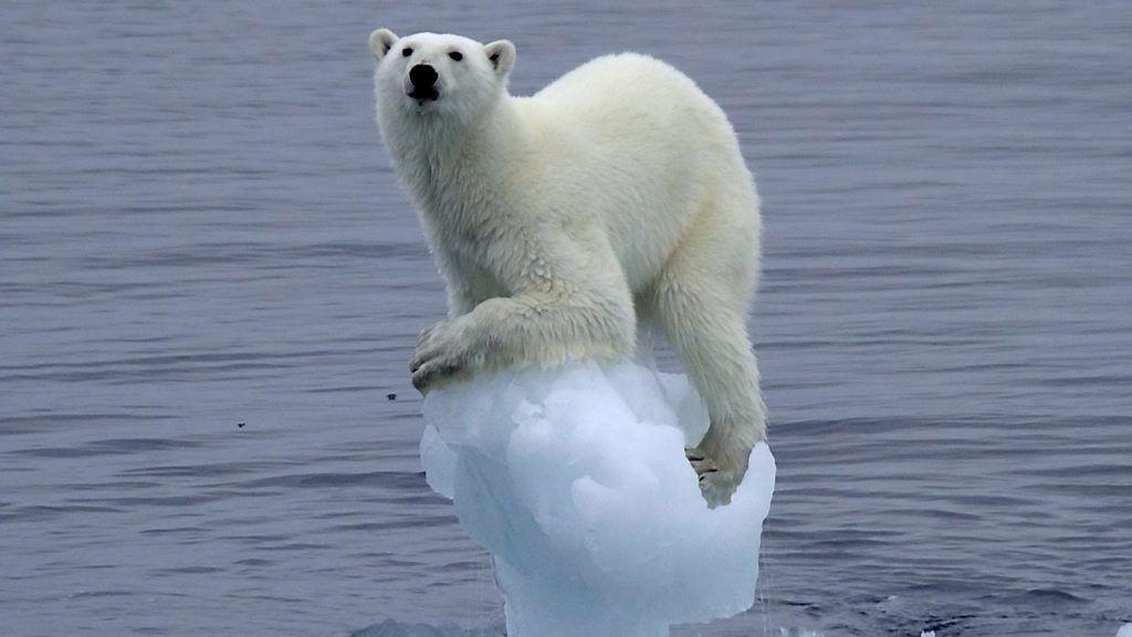 Ledende politikere, forskere, oljeindustri og arktiske beslutningstakere belyser denne uken om vi skal utnytte lovende muligheter i er varmere og mer tilgjengelig Arktis.