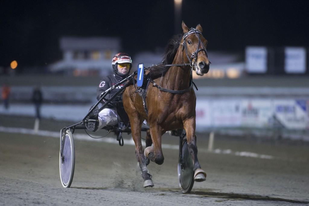 Geir Vegard Gundersen kjører vår banker denne torsdagen._foto_Roger Svalsr¿d_hesteguiden.com