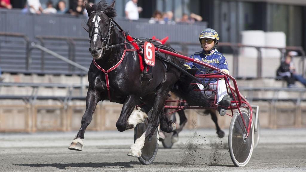 Kristian Malmin kjører vår banker denne fredagen. foto_Roger Svalsr¿d_hesteguiden.com