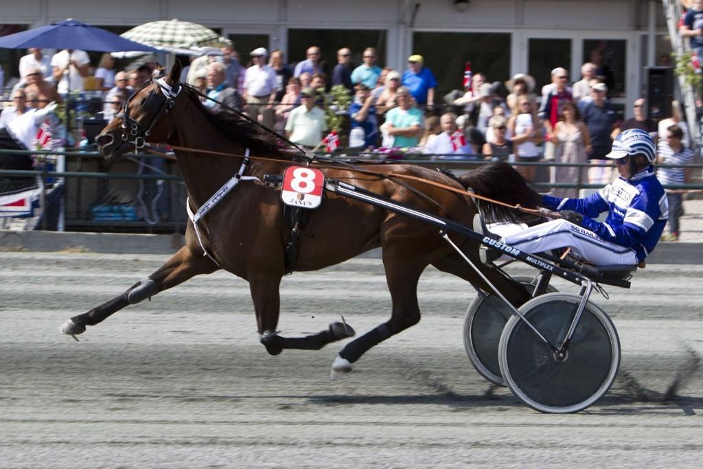 Apollo Hornline, og Svein Ove Wassberg er en av våre bankere denne torsdagen. _Foto Morten Skifjeld/Hesteguiden.com
