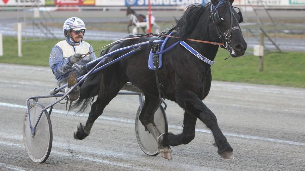 Solør Svarten og Geir Gudmestad.