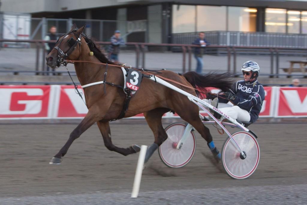 Øystein Tjomsland kjører vår frekke V65-banker fra Sørlandet søndag. Foto: Anders Kongsrud/www.hesteguiden.com.