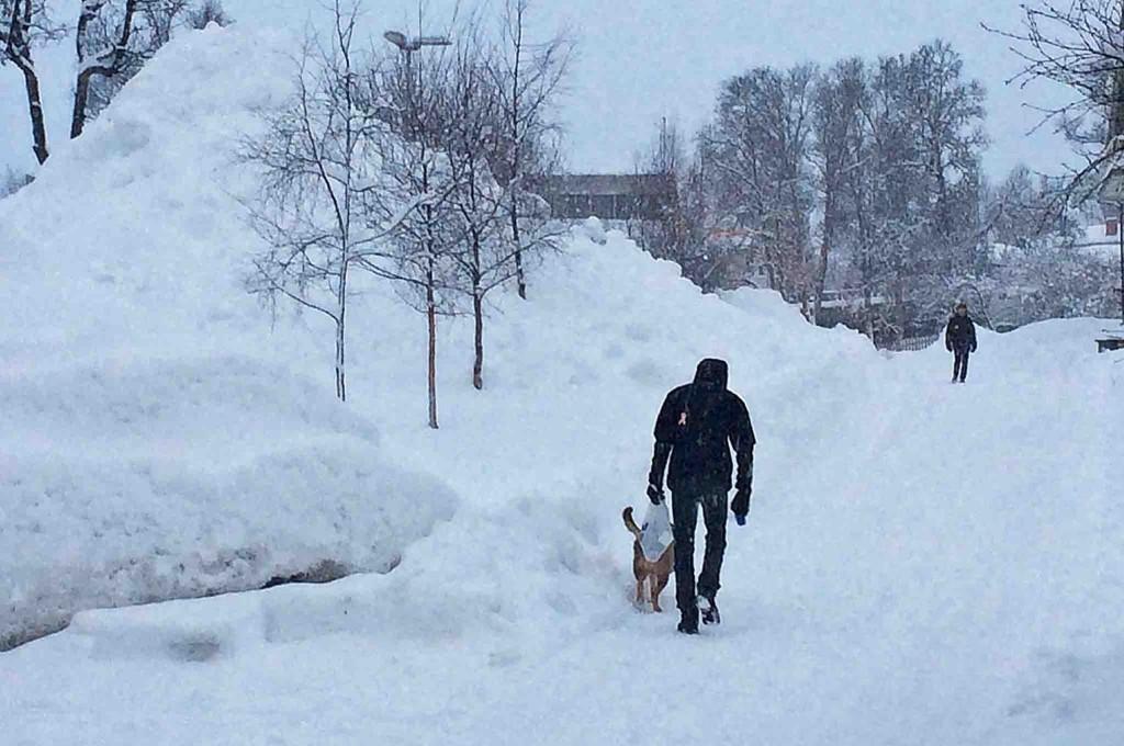 Slik så det ut i Tromsø torsdag ettermiddag.