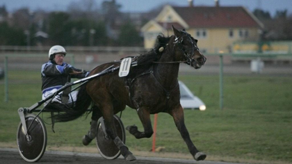 Frank Westberg kjører en spennende hest i V64-finalen