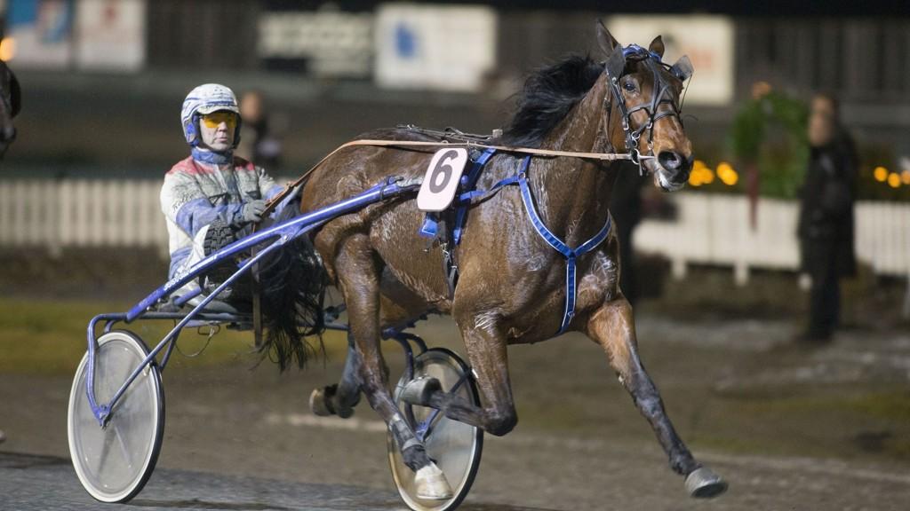 Lars Anvar Kolle kjører vår banker på Jarlsberg denne fredagen. foto_Roger Svalsr¿d_hesteguiden.com