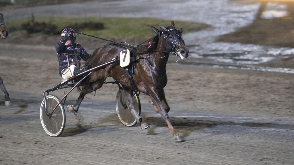Magnus Teien Gundersen vinner med Talenti Rosso på Momarken 6. januar.