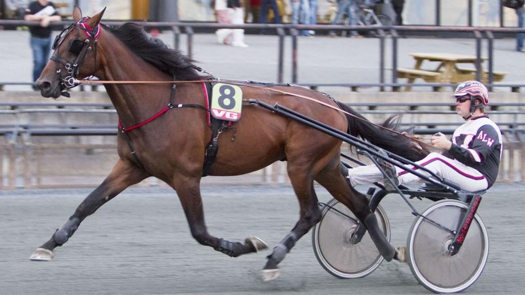 Anders Lundstrøm Wolden kommer ut med et par spenennde hester i årsdebut. Foto: Anders Kongsrud/www.hesteguiden.com.