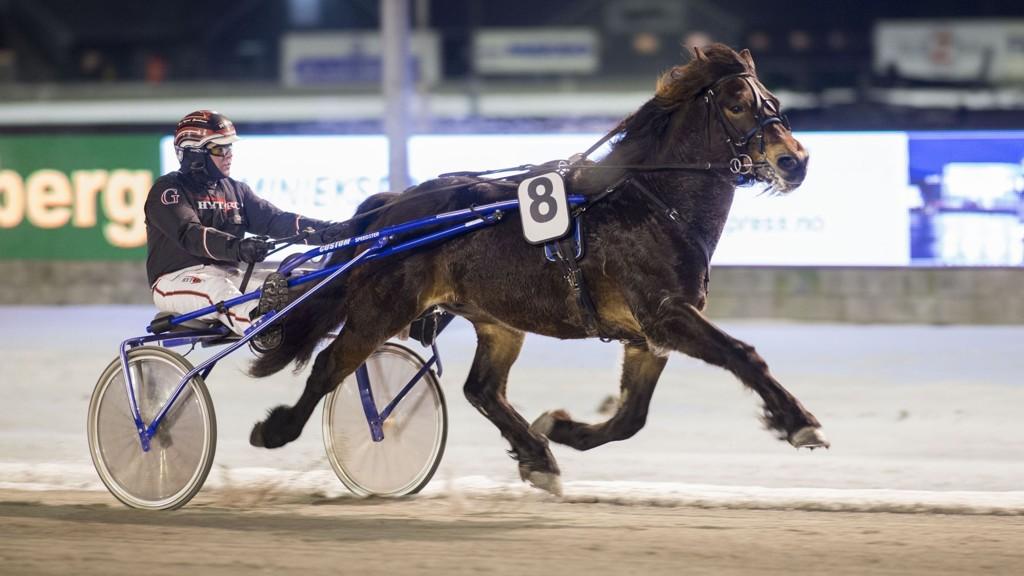 Lykkerus (her med Geir Vegard Gundersen) blir stor favoritt i V65-1 i Drammen mandag.