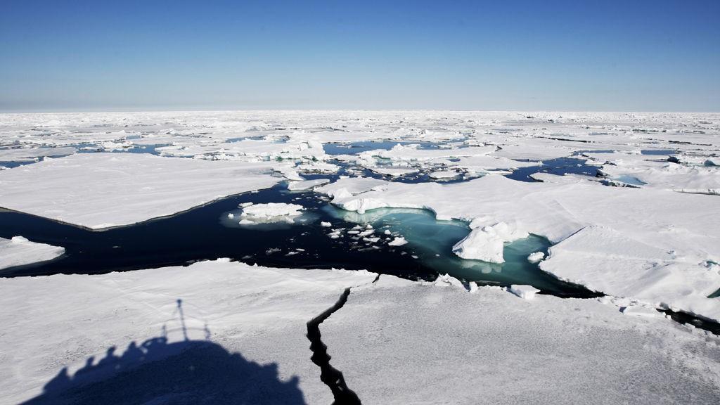2014 var det varmeste året siden 1800-tallet, ifølge Verdens meteorologiorganisasjon.