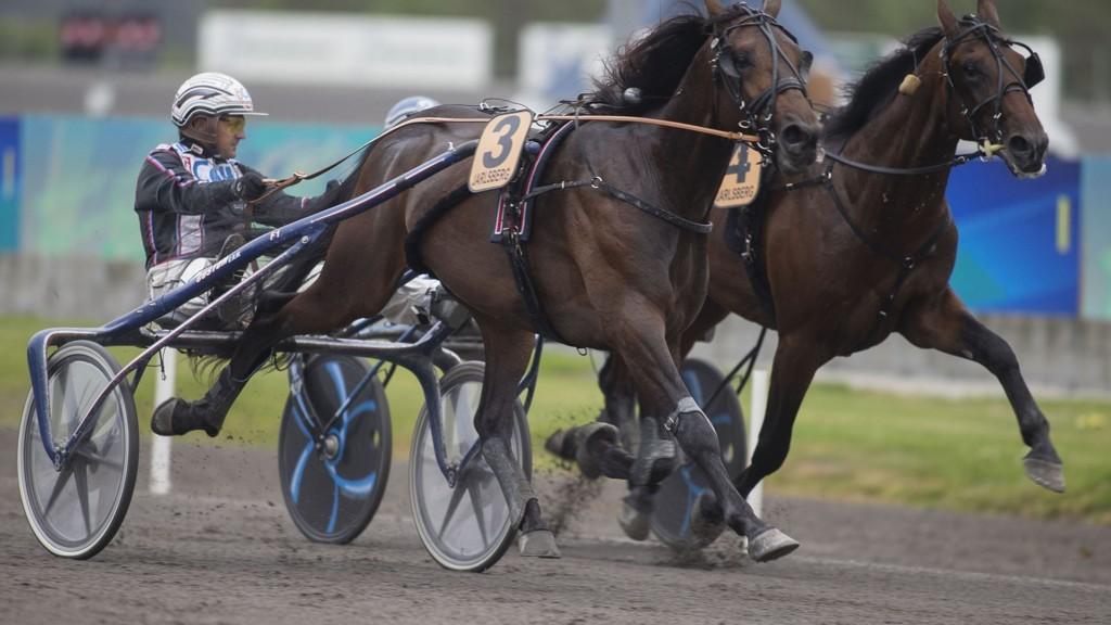 Ulf Ohlsson kjører en av dagens tyngste favoritter på Östersund. foto_Roger Svalsr¿d_hesteguiden.com