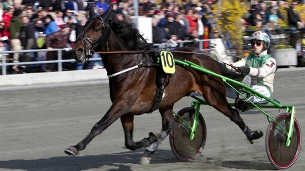 Jeppe Juel har flere interessante hester til start på Jägersro tirsdag.