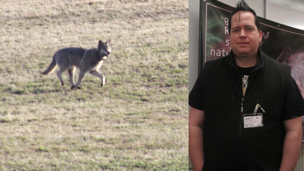 - TAR AV: Lars-Erik Lie i foreningen Bygdefolk for rovdyr, synes ulvedebatten har blitt styggere. Foto: Scanpix/Maria Schiller Tønnessen (Mediehuset Nettavisen)